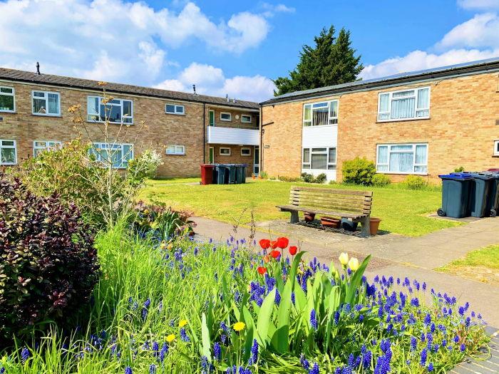 Corwen Road sheltered housing communal garden