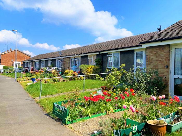 Durham Close sheltered housing gardens