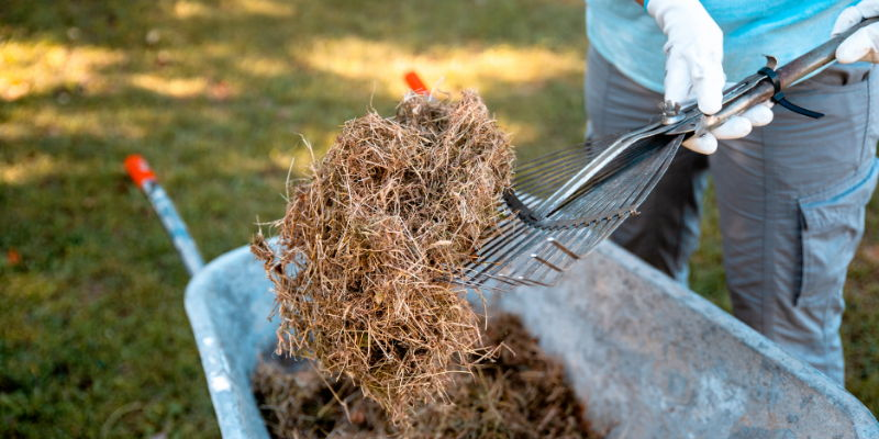 Reading's Green Waste Collections to Resume Mid-August